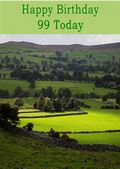 Happy Birthday - 99 Today - Option 2
